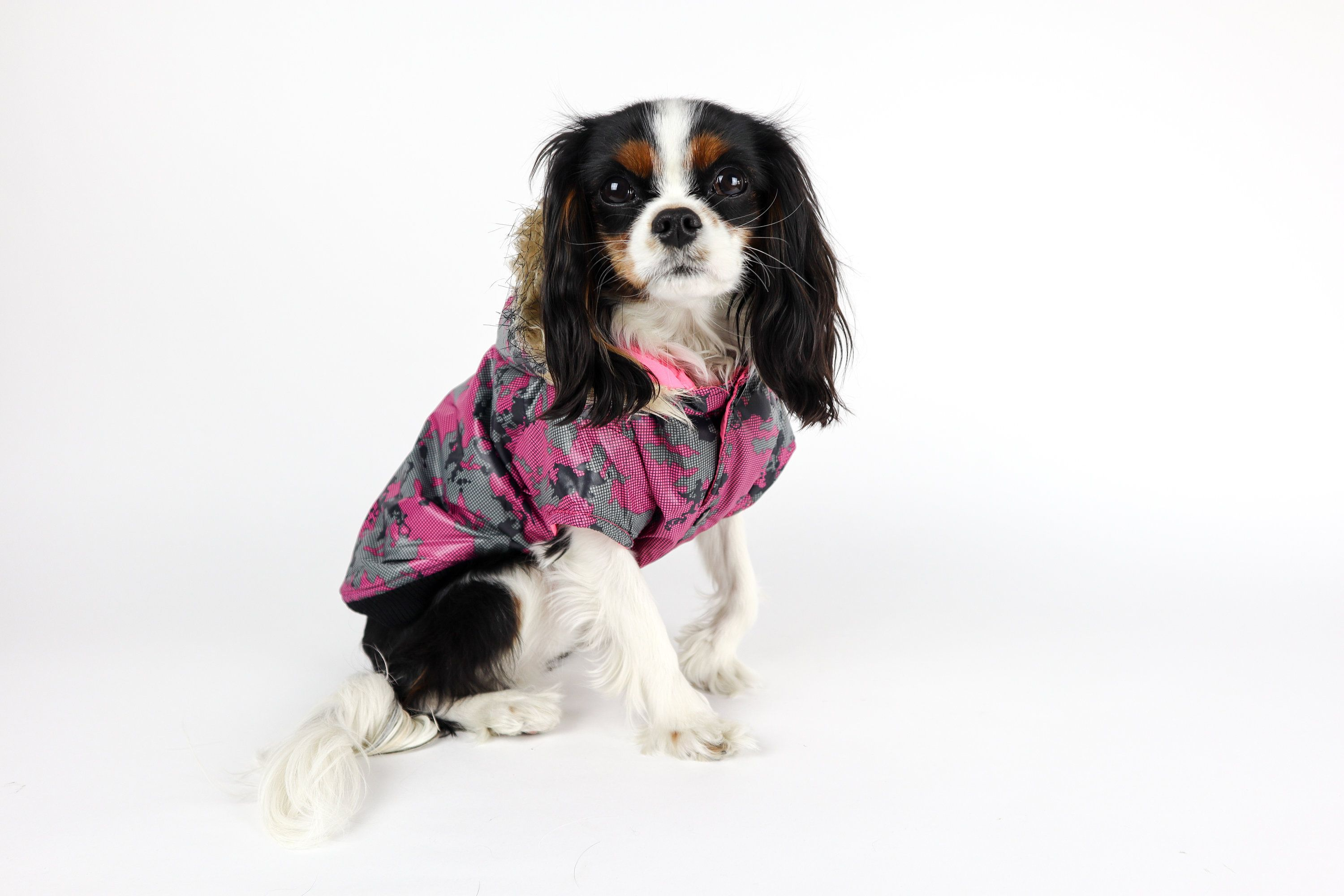 Reversible Dog Parka Jacket With Images Dog Parka Dog Clothes Puppy Clothes