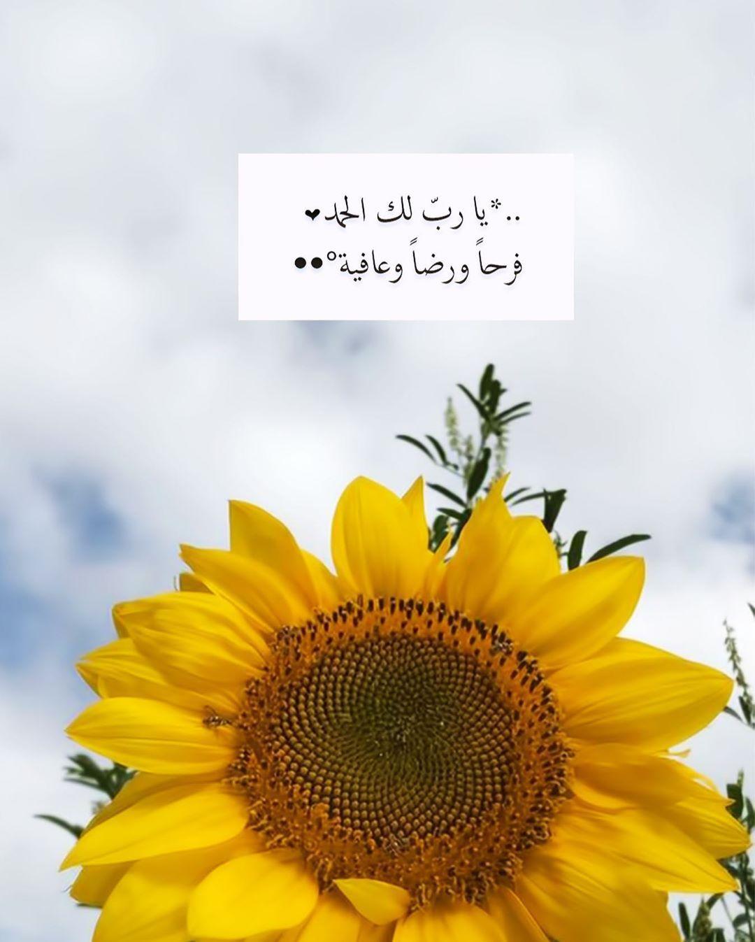 P E A R L A On Instagram ي ا رب لك الح مد ف رحا ورضا وع افيـة ㅤㅤㅤㅤㅤ ㅤㅤㅤㅤㅤ مساء ال Mom And Dad Quotes Islamic Images Flower Iphone Wallpaper