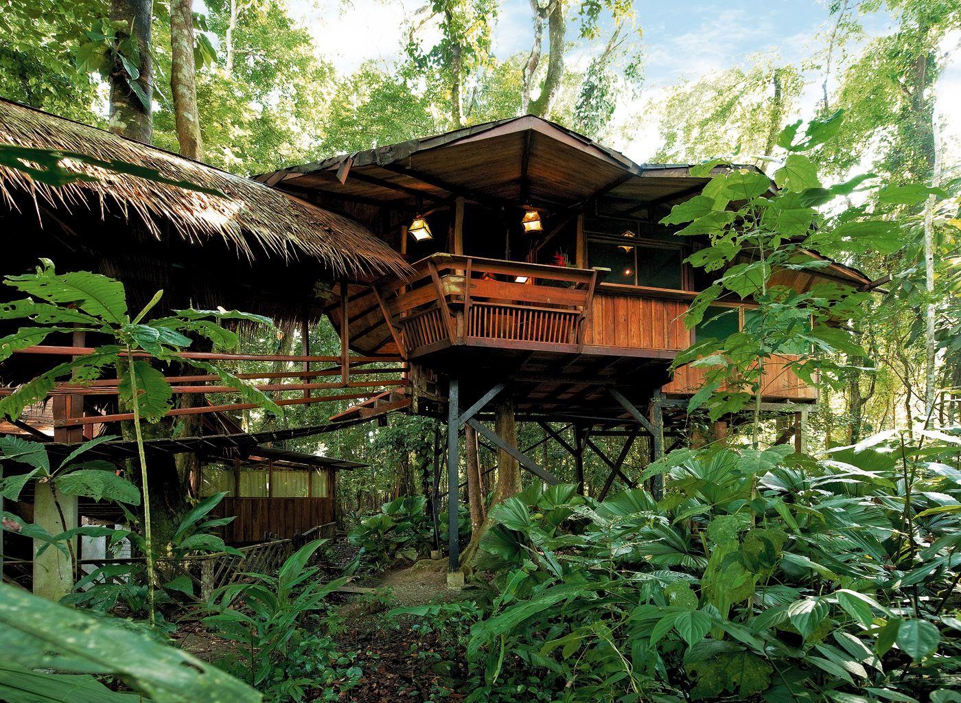 Costa Rica Tree House Lodge Cool Tree Houses Beautiful Tree Houses Tree House Resort