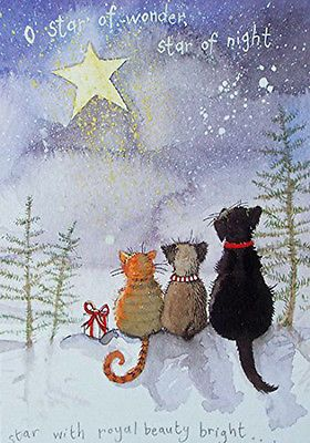 Alex Clark  Pack Charity Christmas Cards Starry Night Cat