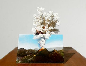 Untitled (volcano) by Alessandro Piangiamore 2010-2012 Coral, postcard, wood pedestal