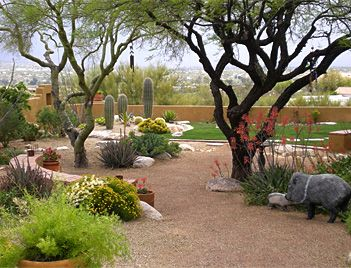 Desert Scape Garden Patio Balcony Pinterest