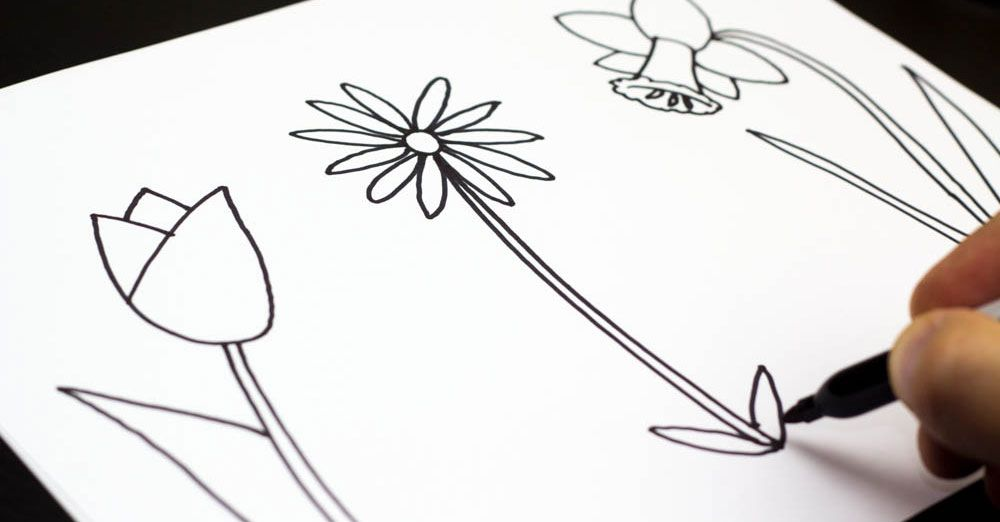 How to draw three spring flowers art for kids hub spring how to draw three different spring flowers tutorial with step by step printables mightylinksfo