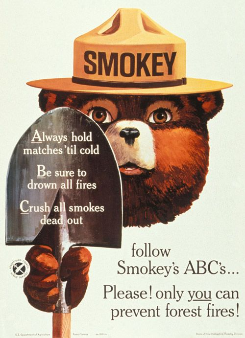 Image result for smokey bear images