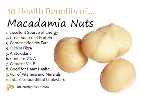 The Health Benefits Of Macadamia Nuts Eating Healthy Living Fit Eathealthylivefit Com Food Health Benefits Coconut Health Benefits Healthy Benefits