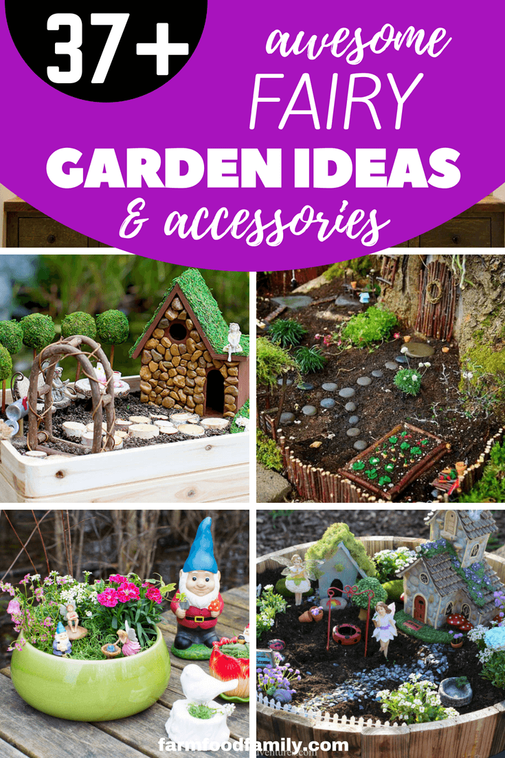 Looking for garden decoration ideas Check out