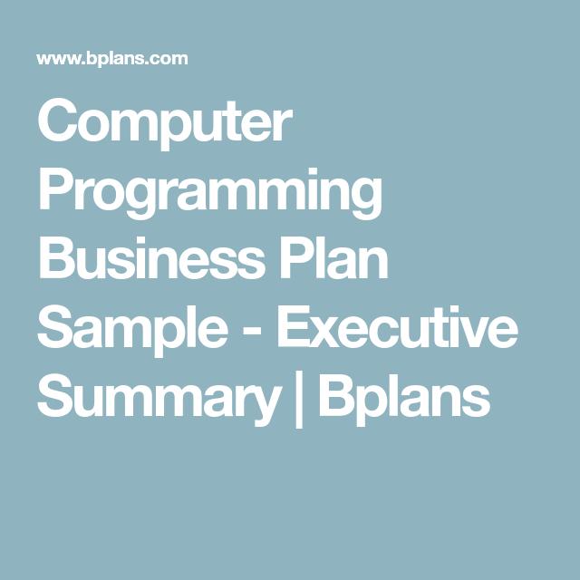 Computer Programming Business Plan