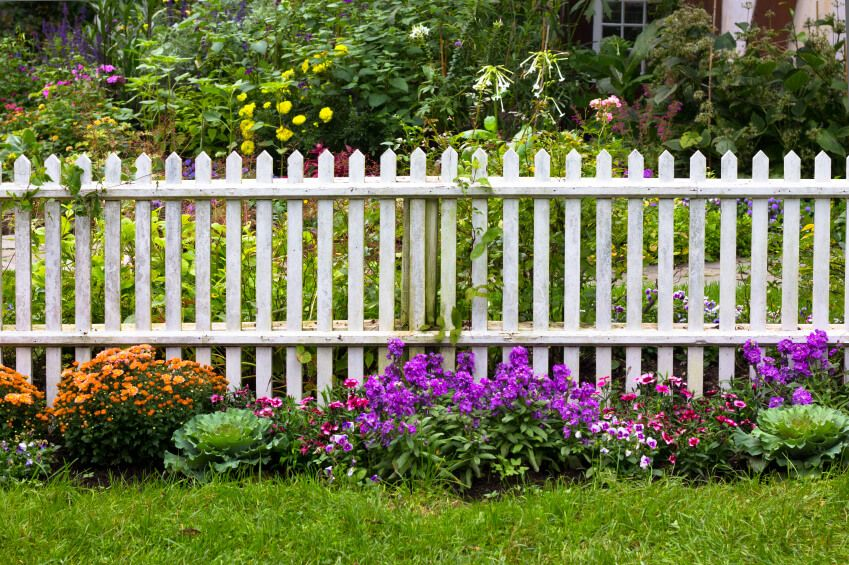 A Wooden White Picket Fence Separating Two Sections Of Garden