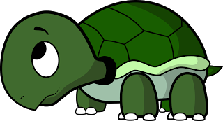 How To Draw A Cartoon Turtle ~ Draw Central