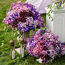 Love purple? Here are some beautiful images and ideas for purple wedding flowers: http://www.colincowieweddings.com/flowers-and-decor/purple-wedding-flowers #wedding