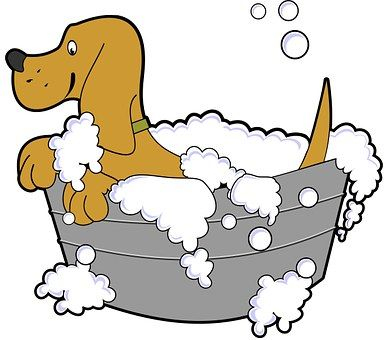 Dog Bath Grooming Tub Pet Soap Pictures To Paint Dog Wash