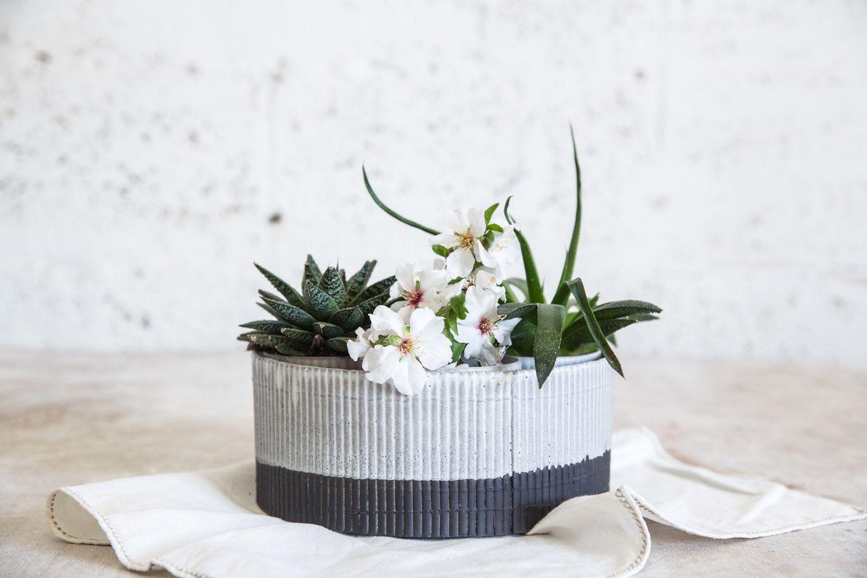 Large Ceramic Planter, Ceramic Planter, Ceramic Bowl Planter, Succulent  Planter, Modern Planter, Indoor Planter, Housewarming Gift