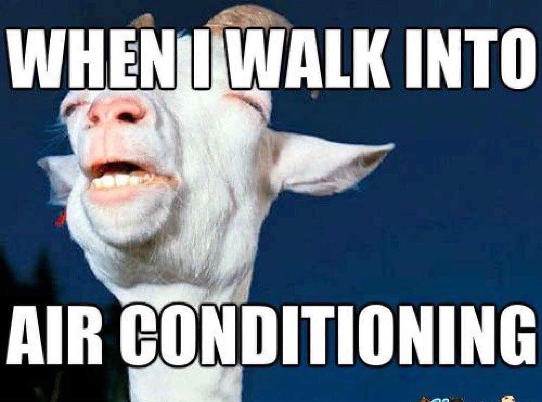 We Re Staying Inside All Day Hvacbabes Hotweather Hotweathersucks Summerdays Hvacjokes Air Conditioning Humor Hvac Humor Hot Weather Humor