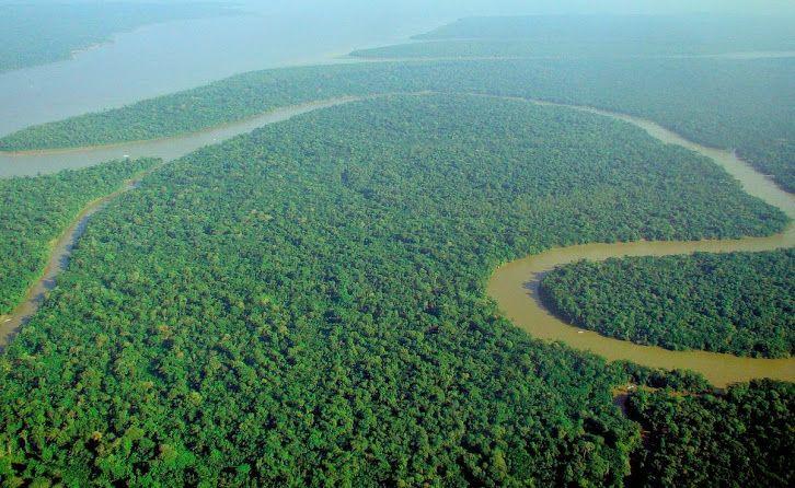 Google+ Amazonia