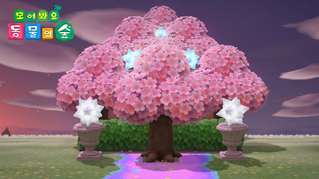 Acnh Design Idea Star Bic Tree Cherry Blossom Speed Build Animal In 2021 Animal Crossing Animal Crossing Game Animal Crossing 3ds