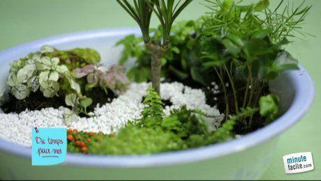 Comment fabriquer un mini jardin ? | jardin | Pinterest | Mini ...