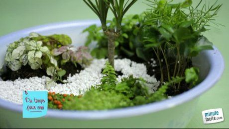 Attrayant Comment Fabriquer Un Mini Jardin ? Idees Impressionnantes