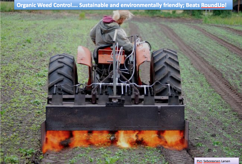 Organic Weed Control Agbioworld Pinterest Organic Weed Control