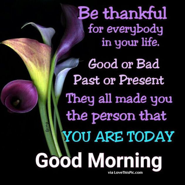 Good Morning Happy Life Quotes: Good Morning Be Thankful For Everybody In Your Life