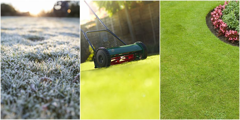 A complete seasonbyseason guide on how to care for your lawn is part of lawn Tips Summer - From January to December…