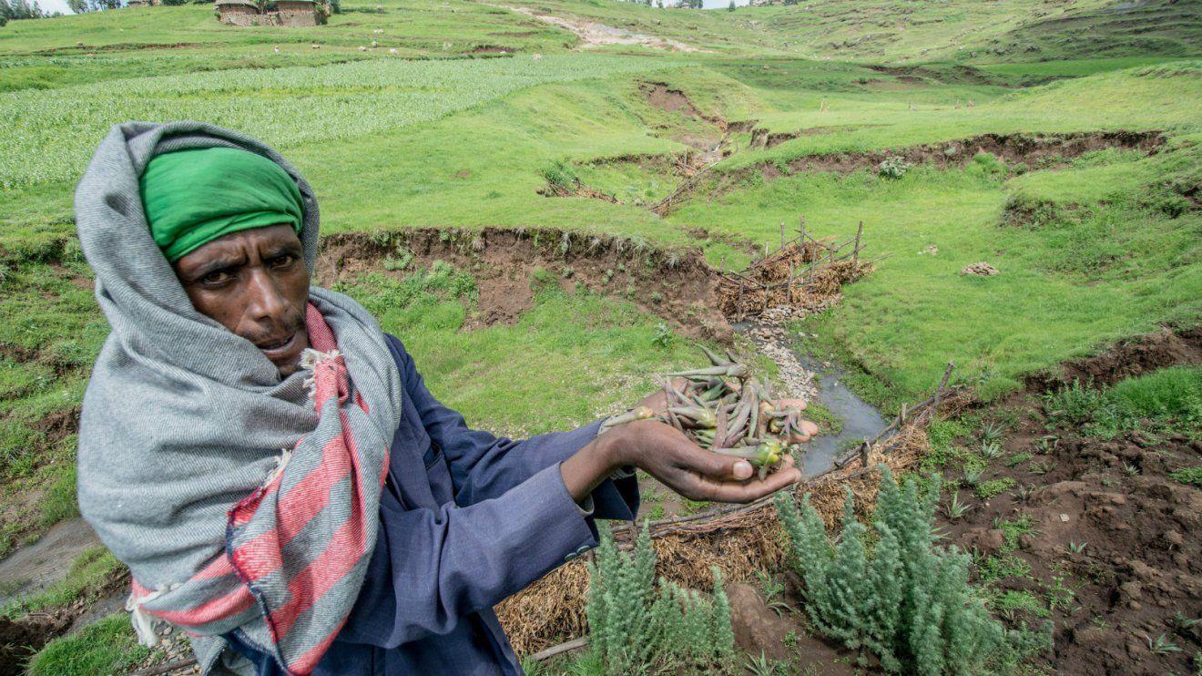 Community member shows how returning leafy matter to the soil improves soil health