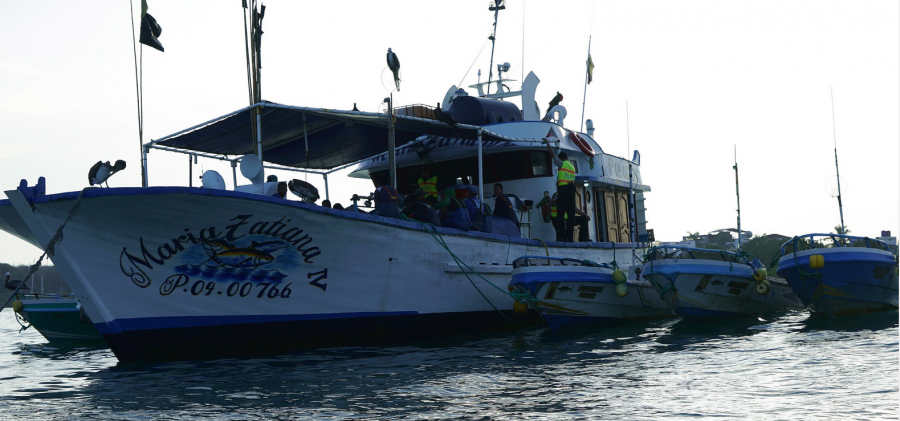 Illegal shark Fishermen Arrested in Galapagos Marine Reserve http://goo.gl/evabja