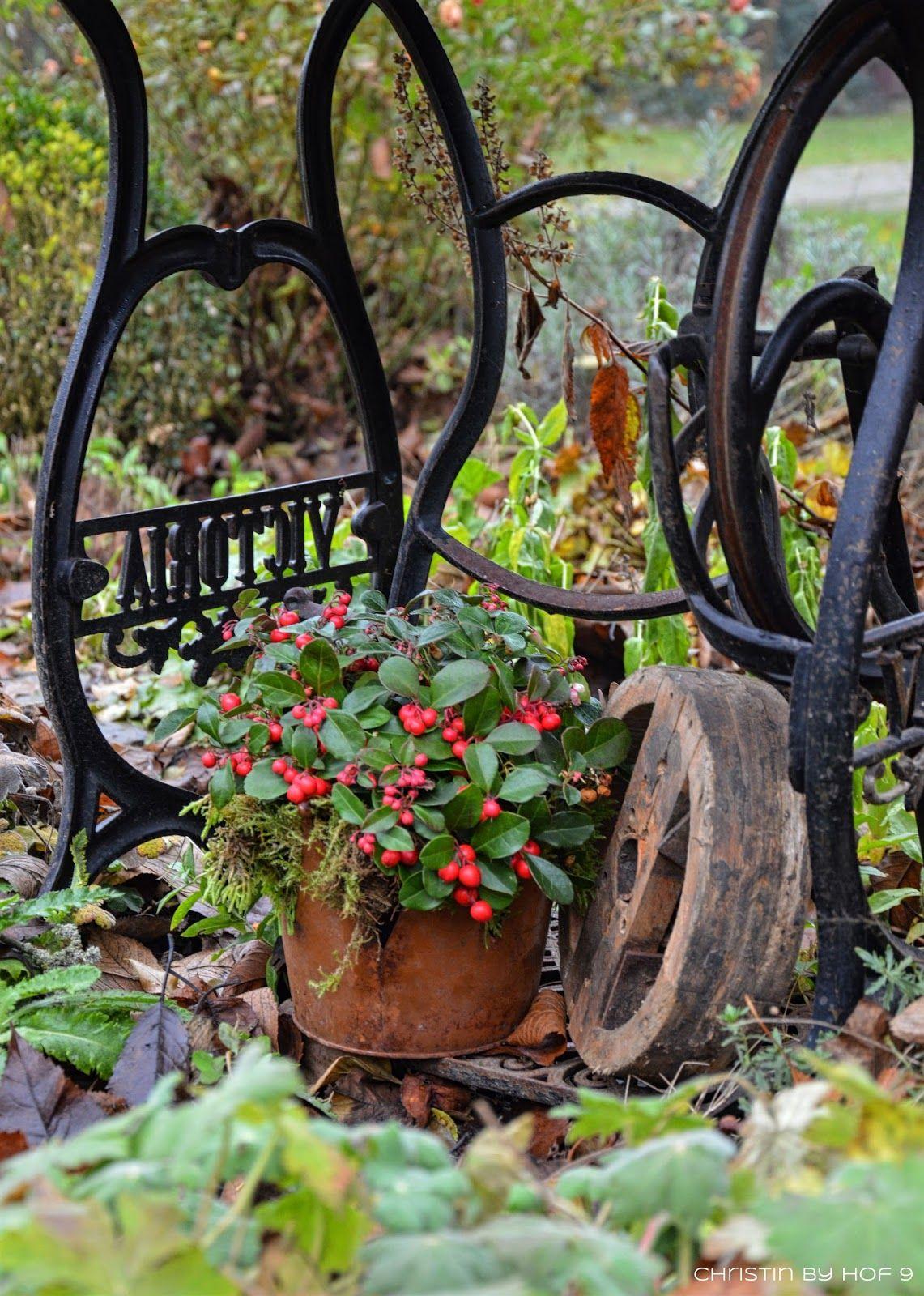 Quaste Aus Kiefernadeln Naturliche Gartendeko Im Winter Weihnachtsdekoration Im Garten Rost Weihnachtsdekoration Garten Garten Deko Weihnachtsdeko Im Garten