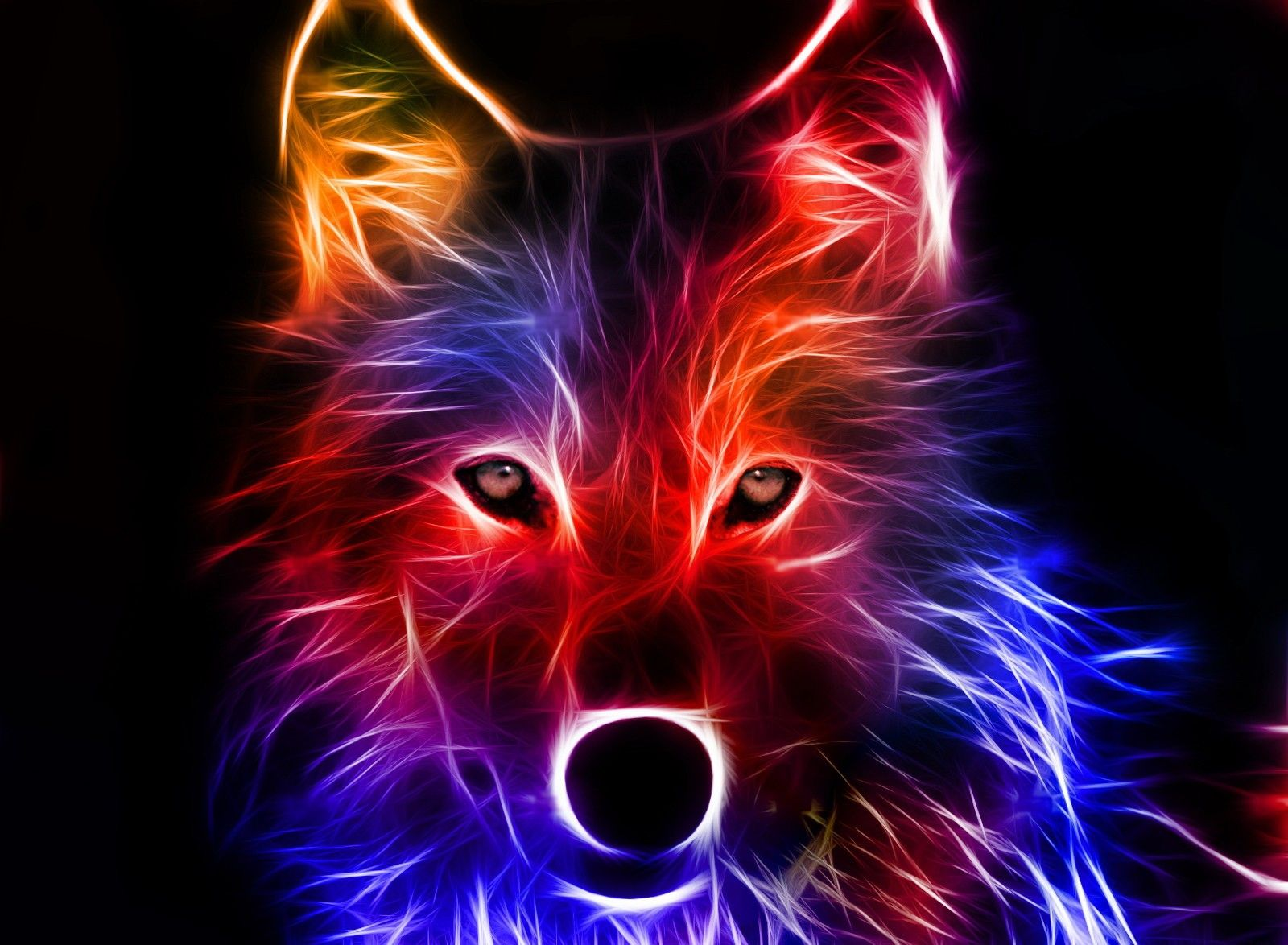 Cool backgrounds best wallpaper background pinteres neon light wolf wallpaper is cool it works on a tablet too if you are wondering where i got it i got to offer zedge voltagebd Choice Image