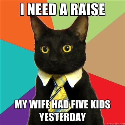 10 Of The Web S Most Popular Cat Memes Business Cat Meme Business Cat Funny Cats