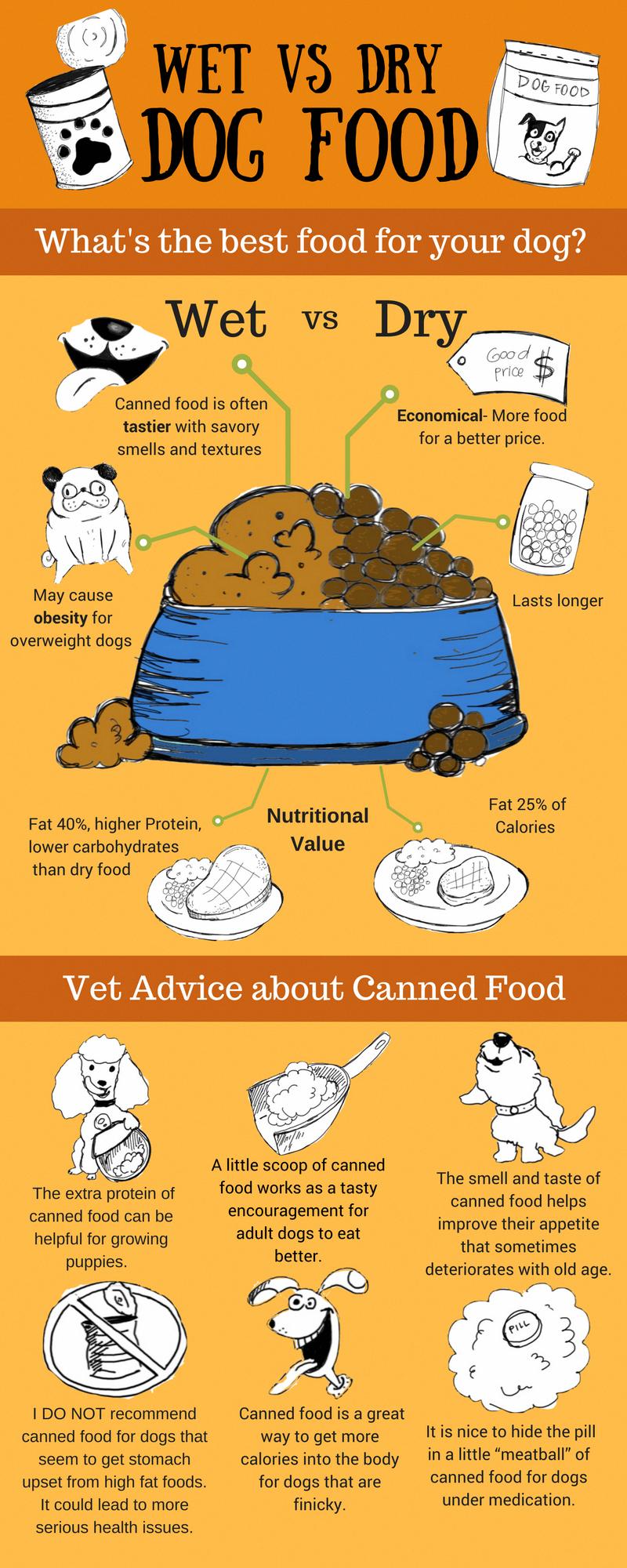 Best Dog Canned Dog Food
