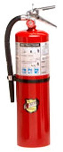 Buckeye 11341 Abc Multipurpose Dry Chemical Hand Held Fire Extinguisher With Brass Valve Chrome Plated And Wall Hook 10 Lbs Agent Capacity 5 1 8 Diameter X 7 3 4 Width X 21 Height Fire
