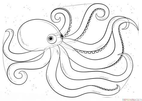 Octopus Octopus Swim Under The Sea Coloring Page Octopus