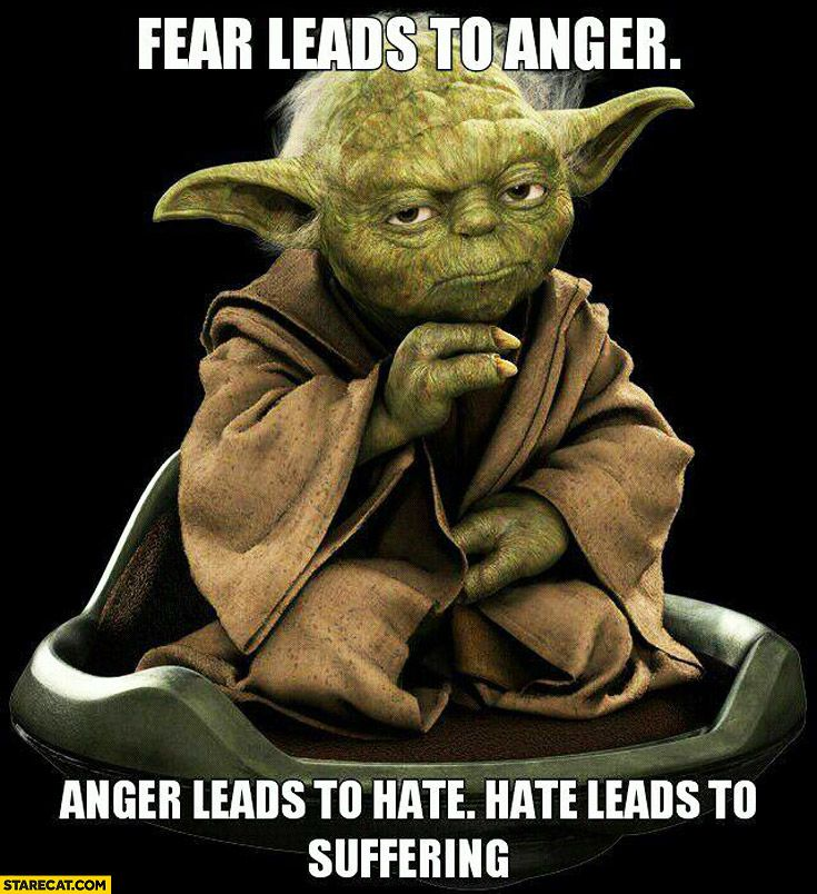 Fear Leads To Anger, Leads To Hate, Leads To Suffering