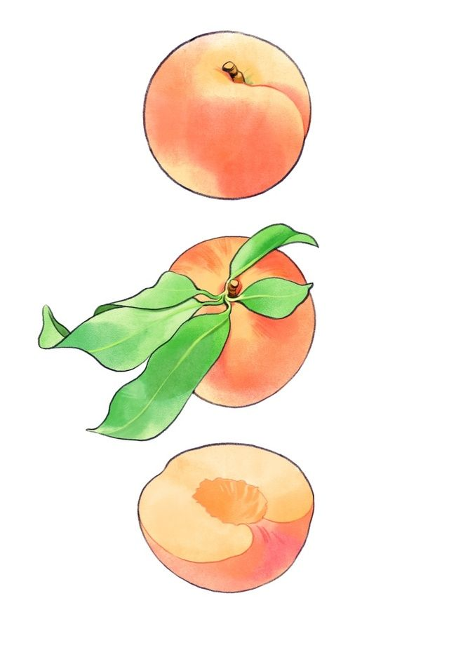 Peach An Art Print By Agroshka Art Peach Tattoo Peach
