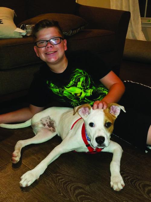 Three Legged Dog Helps Middle School Boy Conquer Bullies Dog