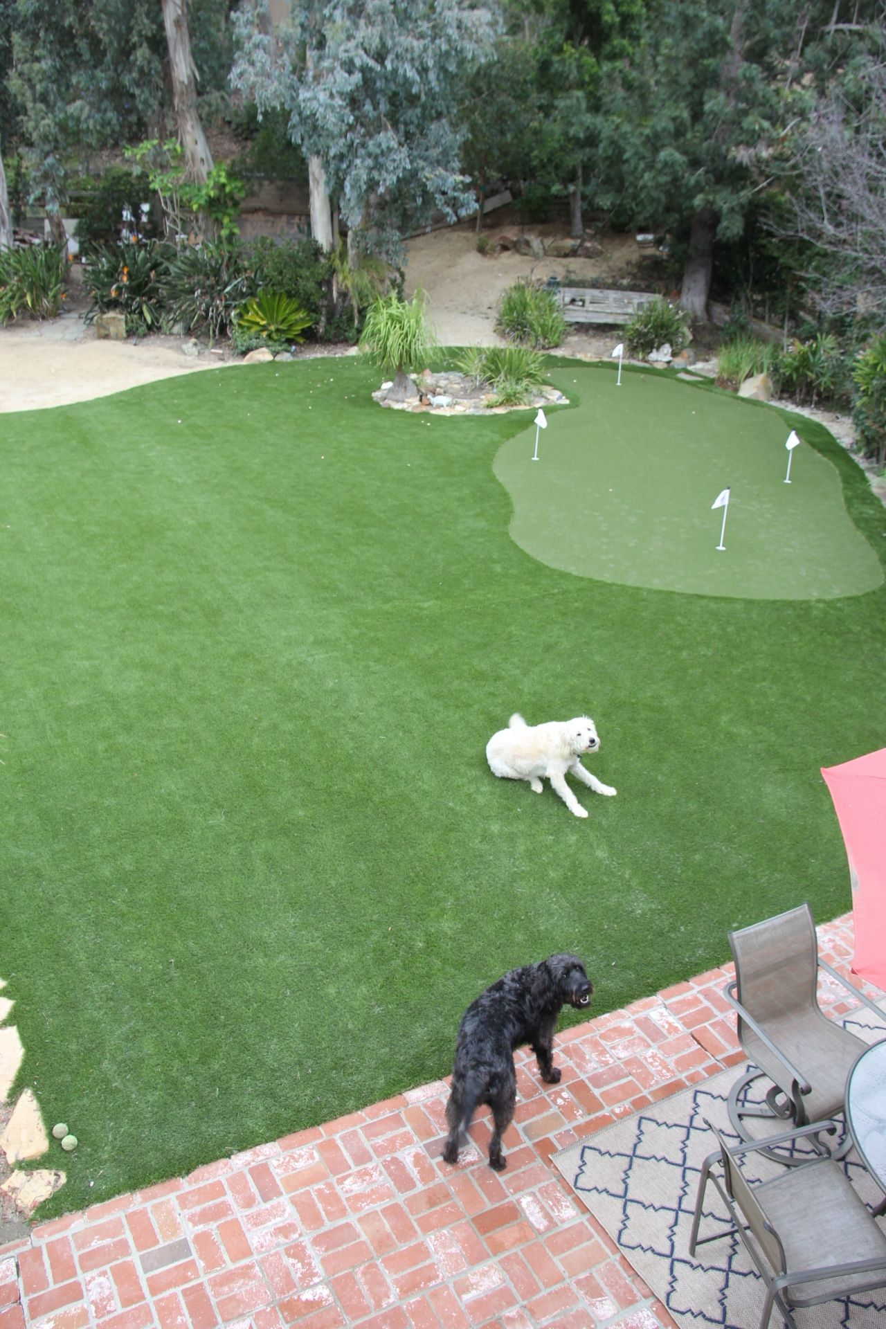 This Backyard In La Jolla Calif Features A Synlawn Golf Putting