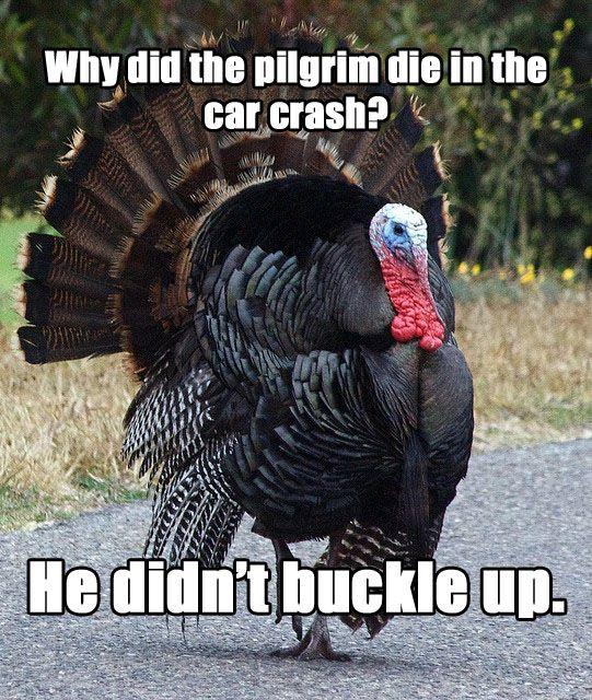"""Meet """"Terrible Thanksgiving Pun Turkey"""""""