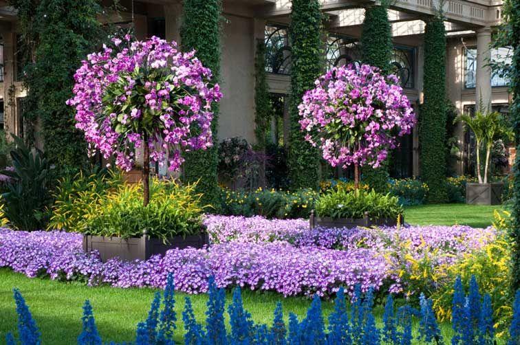 547c3f8c70551506ae9022431bcb6d6f - How Much Is A Longwood Gardens Membership