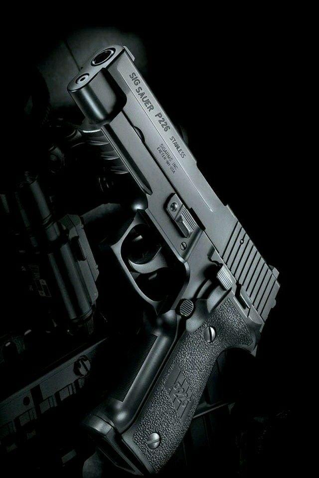 Best 25 Sig Sauer P226 Ideas On Pinterest Weapons Guns