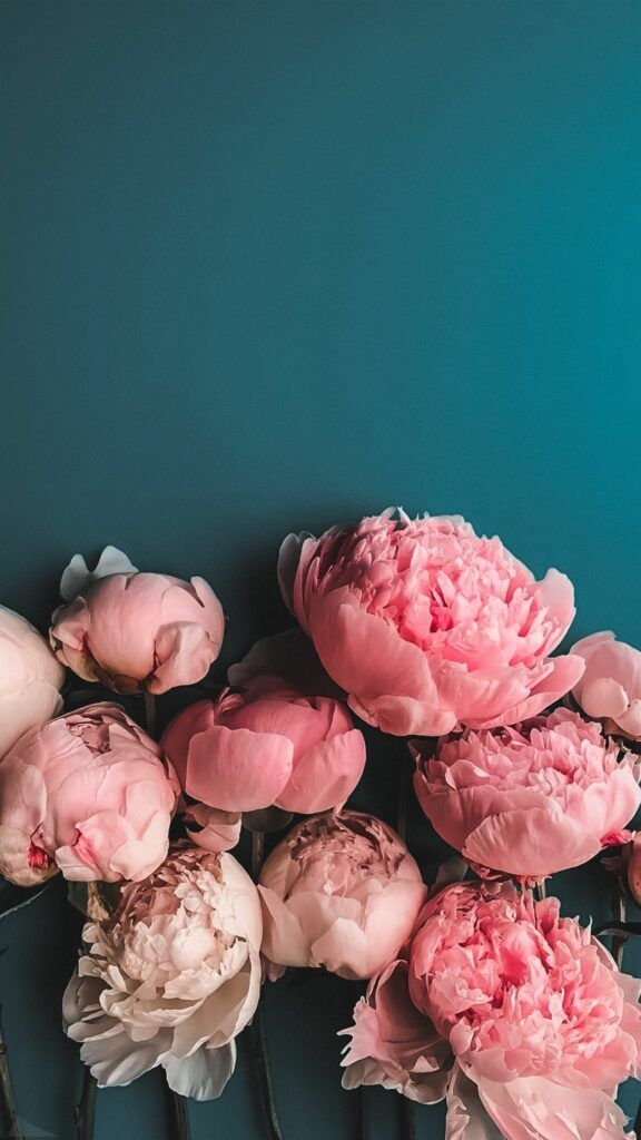 90 Amazing Wallpaper Backgrounds To Grace Your Screen Bring Art In Your Everyday Life With An Art Flower Phone Wallpaper Flower Aesthetic Peony Wallpaper