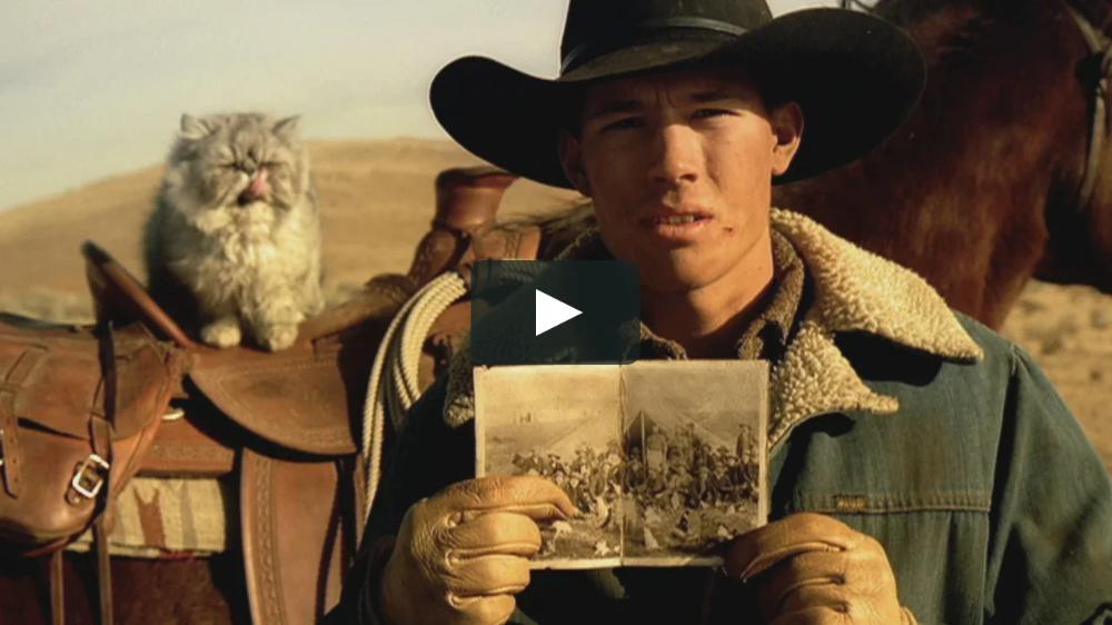 """EDS """"Cat Herders"""" Director John O'Hagan Agency Fallon"""