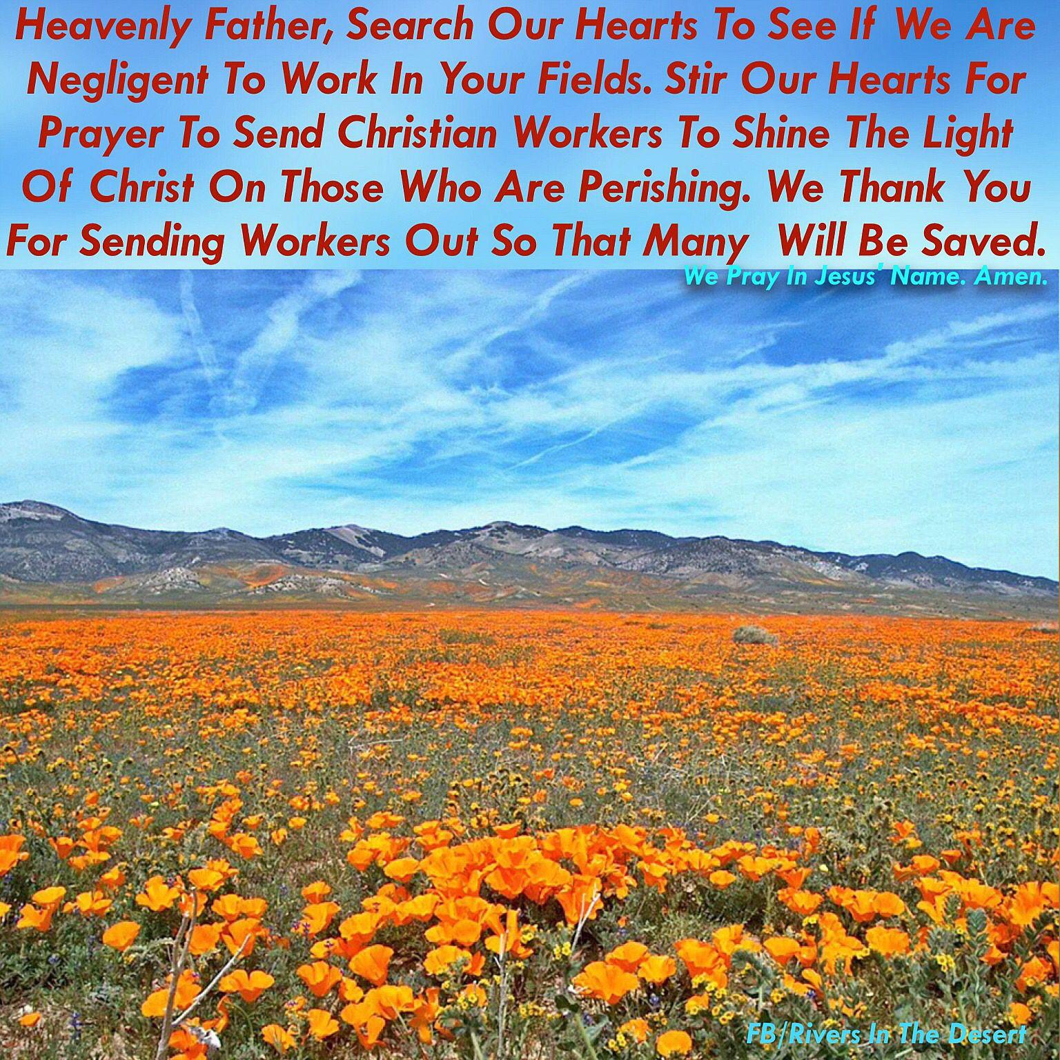 Prayer inspired by with Matthew 9:37,38
