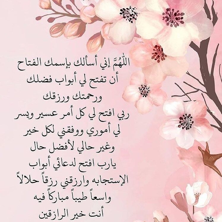 253 Likes 9 Comments أذكار يومية Dailyadhkar On Instagram Lilly Flower Islam Beliefs Islam Hadith