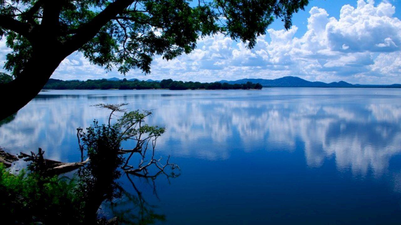 تعريف النظام البيئي Natural Landmarks Ecology Photo