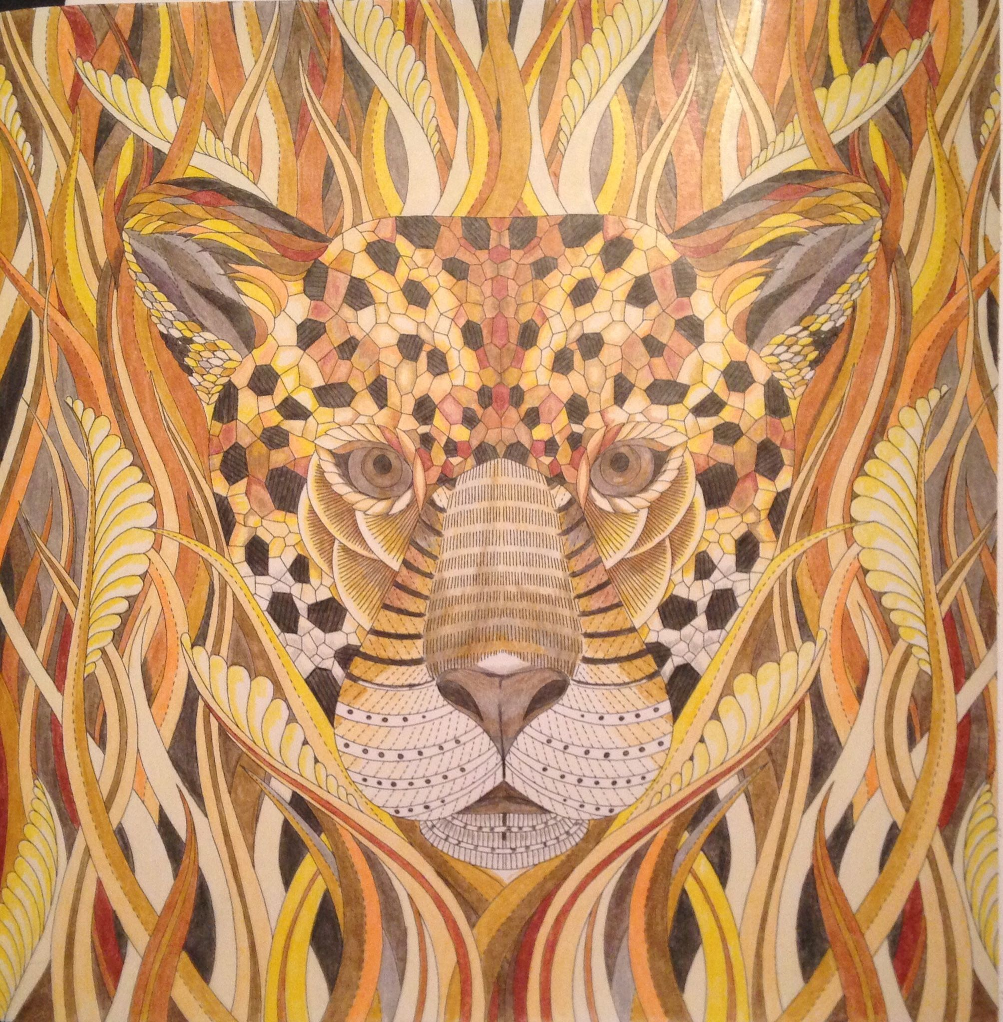 From millie marottaus tropical wonderland colouring book random