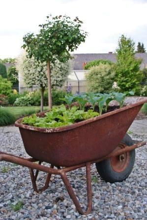 Mein Selbst Gestaltetes Hochbeet Garden Pinterest Hochbeet