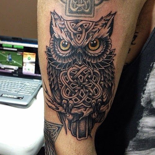 Neo Traditional Owl Tattoo Celtic Owl Tattoo Traditional Owl Tattoos Owl Tattoo
