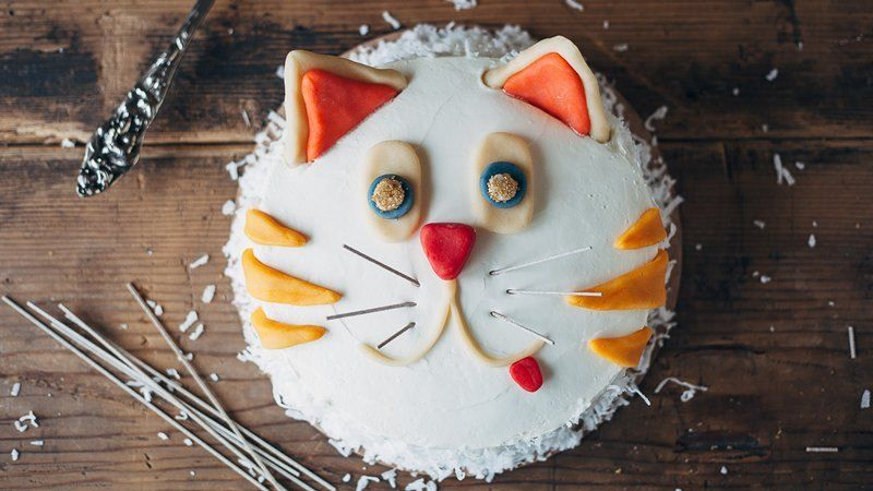Birthday cake for cats recipe Food for health recipes