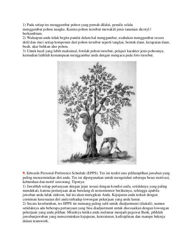 Gambar Pohon Psikotes : gambar, pohon, psikotes, Psikotest