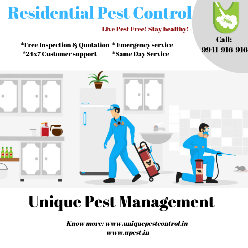 House Human Family Home In Urban Areas House Family Human Pest Home Pests Are Active Year Round Which Means Yo Pest Control Services Pest Control Home Family